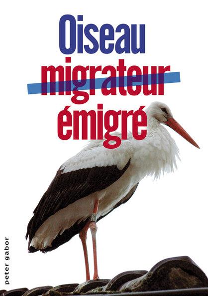 Oiseaumigrateur3w